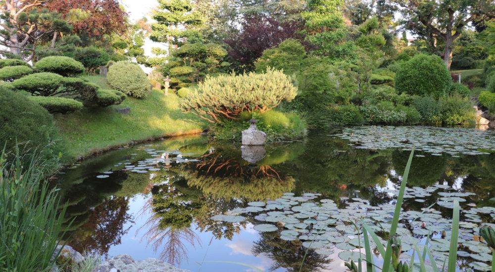 jardin_borja